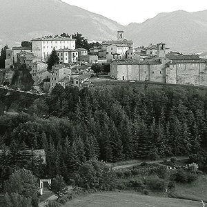montone-poggio-maiolo2